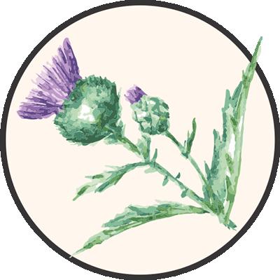 Thistles Florist